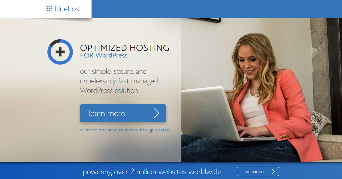 Bluehost hosted domains